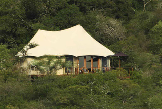 Lodges réserves privées Kwazulu Natal 1 afrique du sud thanda tented camp0