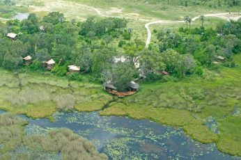 Baine's Camp 7 botswana baines camp7