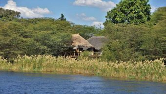 Chobe Bakwena Lodge 11