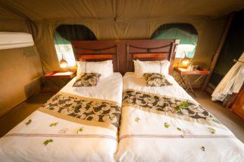 Camp Savuti 4 botswana camp savuti2