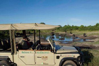 Chobe Game Lodge 17 botswana chobe game lodge18