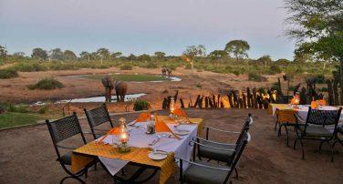 Elephant Valley Lodge 2 botswana elephant valley lodge1