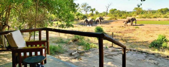 Elephant Valley Lodge 10 botswana elephant valley lodge11