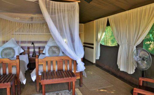 Elephant Valley Lodge 12 botswana elephant valley lodge12