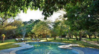 Elephant Valley Lodge 9 botswana elephant valley lodge7