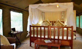 Elephant Valley Lodge 8 botswana elephant valley lodge9