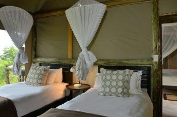 Ghoha Hills Savuti Lodge 5 botswana ghoha hills savuti lodge4