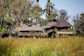 Gunn's Camp 8
