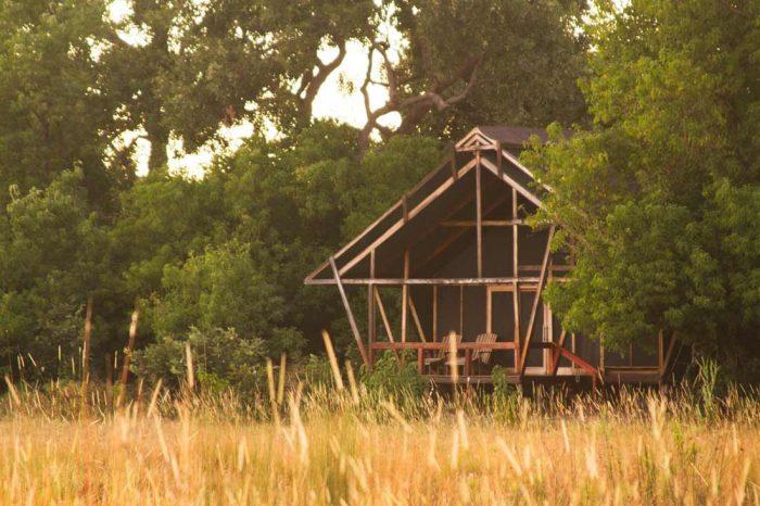 Lebala Camp 12 botswana lebala camp8