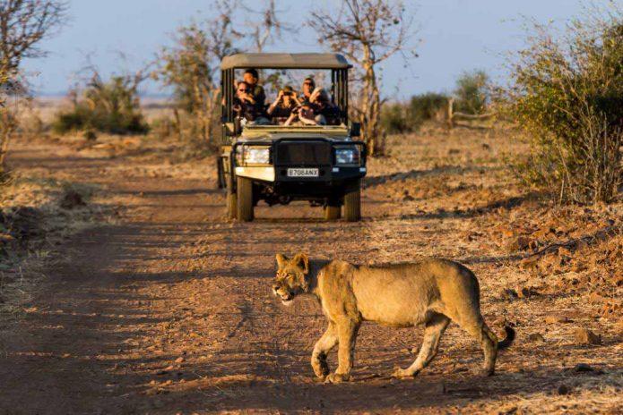 Muchenje Safari Lodge 6 botswana muchenje safari lodge7