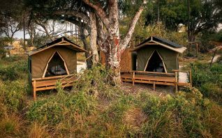Oddballs' Camp 4 botswana oddballs camp4
