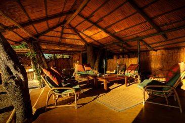 Oddballs' Camp 7 botswana oddballs camp8