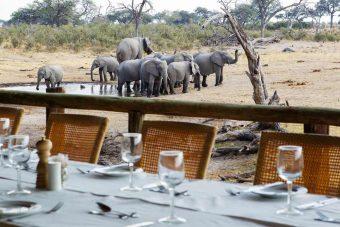 Savute Safari Lodge 3 botswana savute safari lodge1