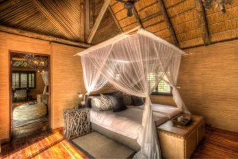 Savute Safari Lodge 6 botswana savute safari lodge4