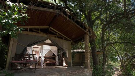 Mara Fig Tree Camp 4 kenya mara fig tree camp10