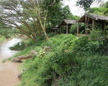 Mara Fig Tree Camp 3 kenya mara fig tree camp4