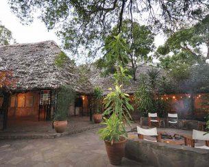 Mara Fig Tree Camp 6 kenya mara fig tree camp5