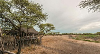 Onguma Tree Top Camp 1 namibie onguma tree top camp1
