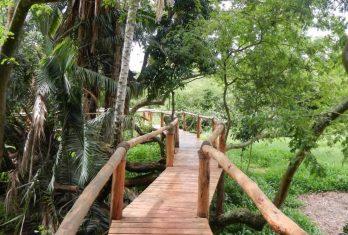 Ruzizi Tented Lodge 5 rwanda ruzizi tented lodge6