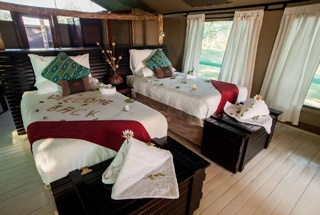 Lodges Savuti 5
