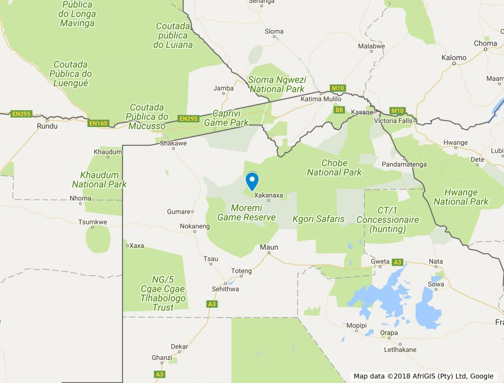 Botswana Safari à pied dans l'Okavango 1 botswana safari a pied okavango