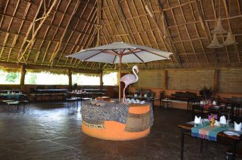 Flamingo Hill Camp 5 kenya flamingo hill camp6