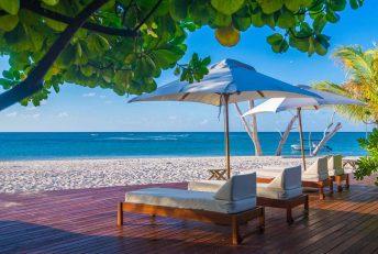 Denis Island 16 seychelles denis island15