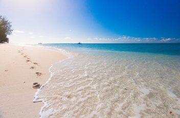Denis Island 18 seychelles denis island19