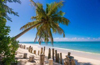 Denis Island 20 seychelles denis island22