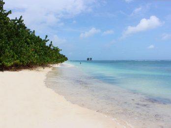 Le Repaire 5 seychelles le repaire5