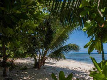Le Repaire 8 seychelles le repaire9