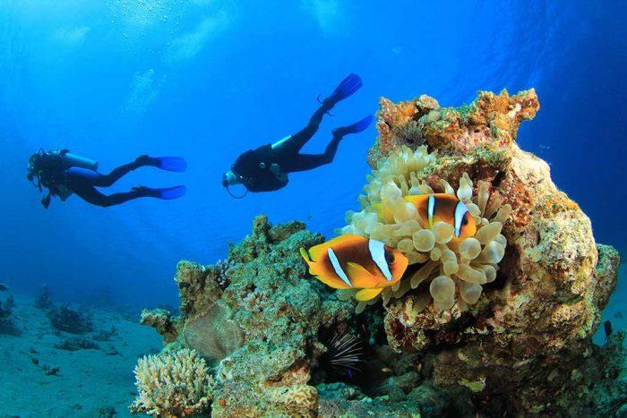 Les Villas d'Or 9 seychelles les villas dor13