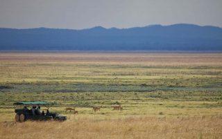 Katavi Wildlife Camp 4 tanzanie du sud katavi wildlife camp8