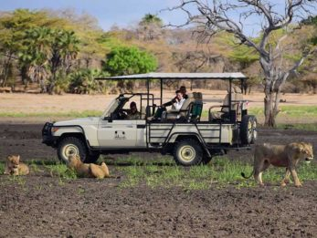 Selous Impala Camp 6 tanzanie du sud selous impala camp10