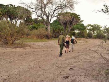 Selous Impala Camp 14 tanzanie du sud selous impala camp12