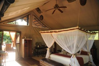 Chiawa Camp 7
