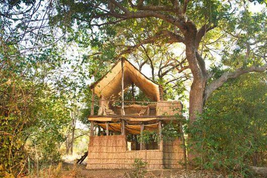 Chikoko & Crocodile Camp 7
