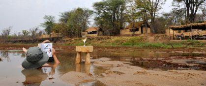 Mwaleshi Camp 2 zambie mwaleshi camp4