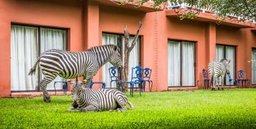 Victoria Falls Resort 12 zambie victoria falls resort11