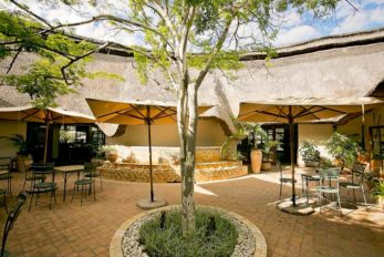 Ilala Lodge 6 zimbabwe ilala lodge6