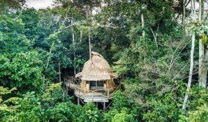 Congo 2 congo lango camp0