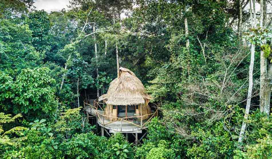 Tous nos lodges au Congo 1 congo lango camp0