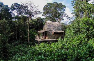 Ngaga Camp 5