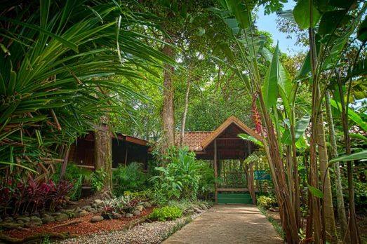 Pachira Lodge 14 costa rica pachira lodge14