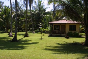 Turtle Beach Lodge 12