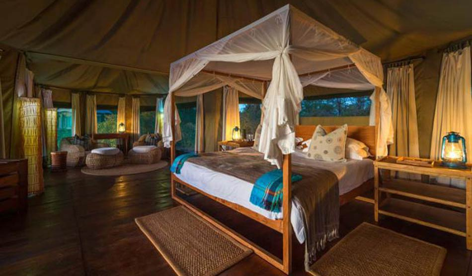 Lodges South Luangwa 7