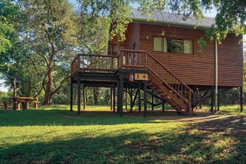 Bonamanzi Tree Houses & Lodges 4