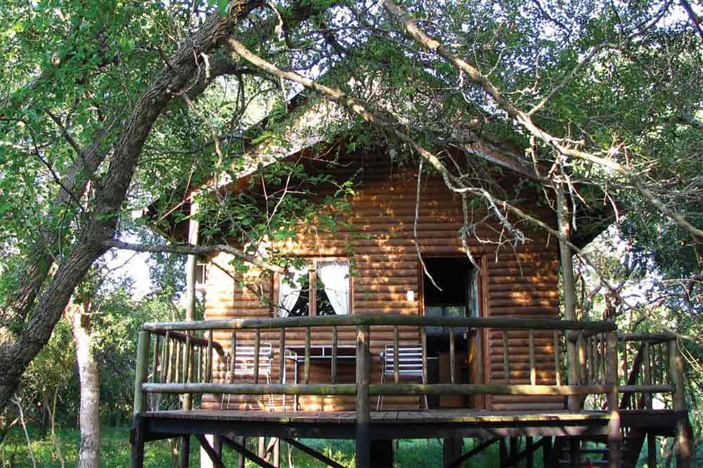 Bonamanzi Tree Houses & Lodges 7