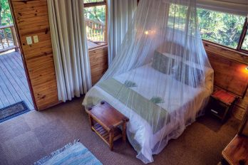 Bonamanzi Tree Houses & Lodges 5
