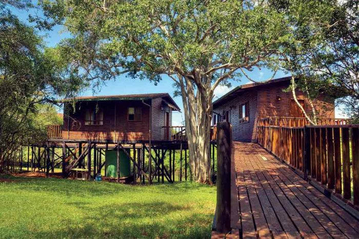 Bonamanzi Tree Houses & Lodges 8